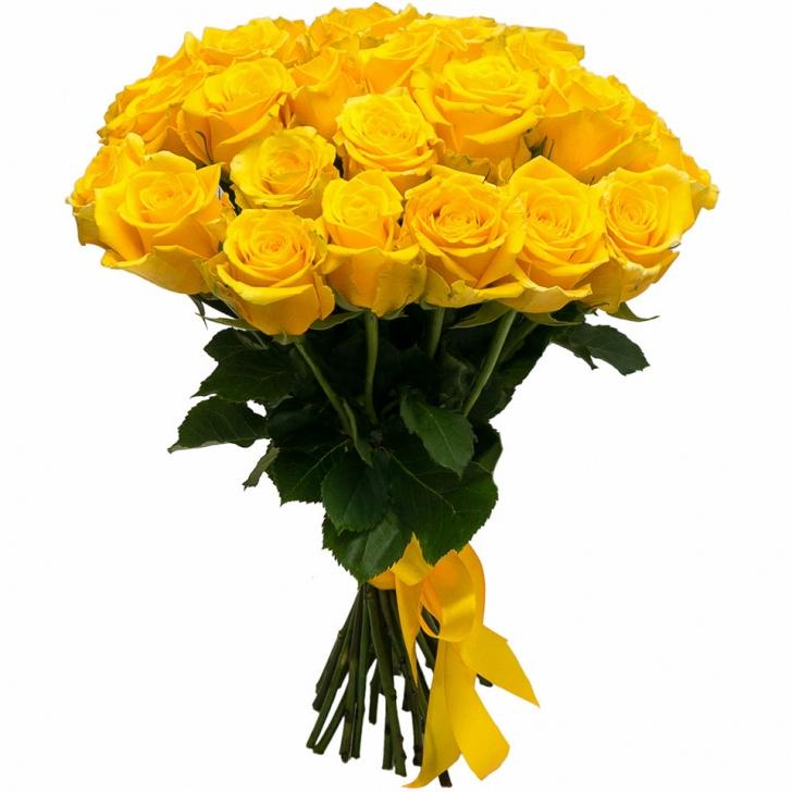 Розы Эквадор желтые
